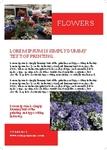 Flower Path