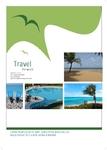 Travel the World Flyer