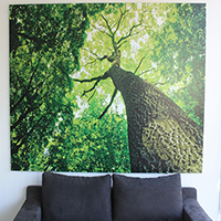 Canvas  Prints 24' * 36'